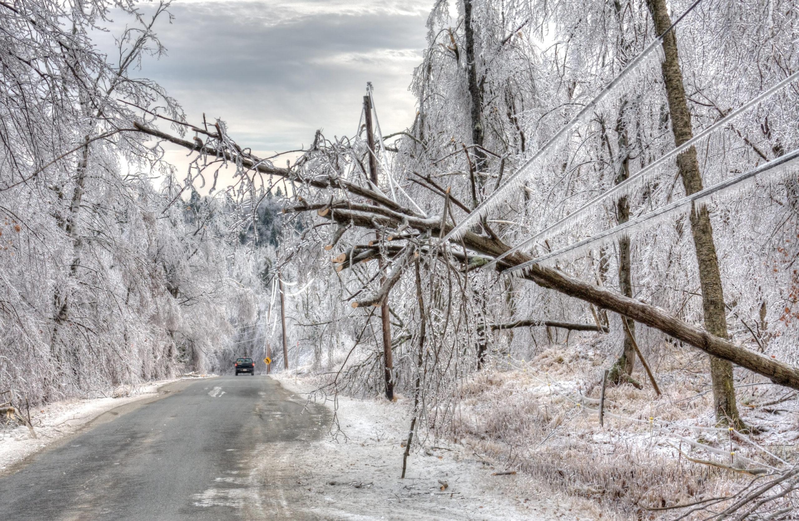 60-Winter Storm G#157509718
